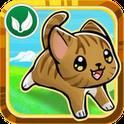Pet Dash Gratis: la corsa dei cuccioli su Android