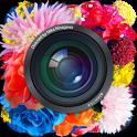 Cameran-icona