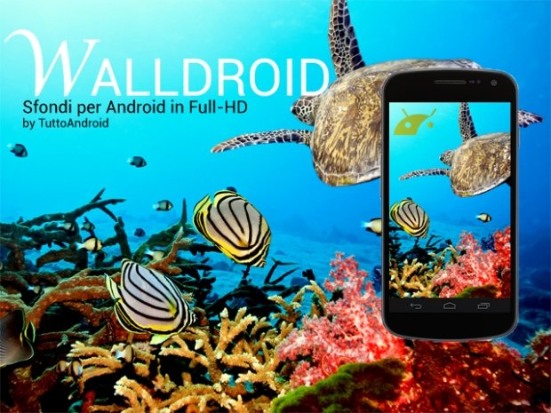 walldroid evidenza