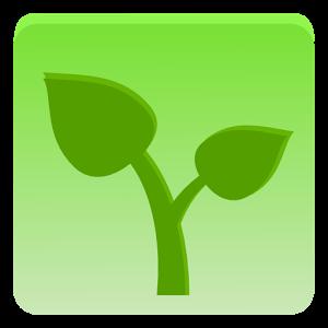 frutta e verdura (1)