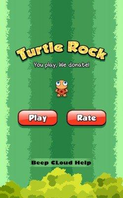 Turtle Rock-1