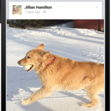 Facebooks-view-counter-and-recommended-videos
