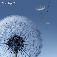Screenshot_2014-09-25-00-36-52