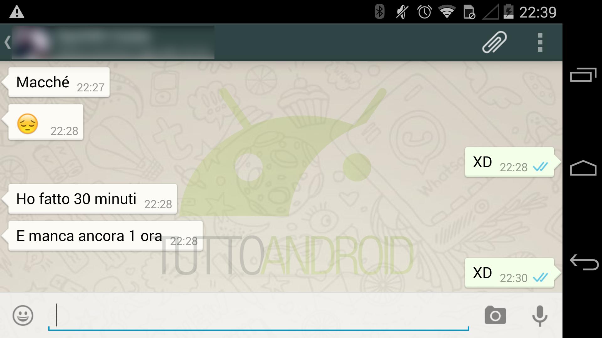 whatsapp-due-spunte