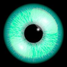 Iris-icona
