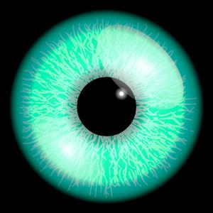 Iris icona