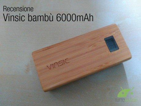 Vinsic bambù 1