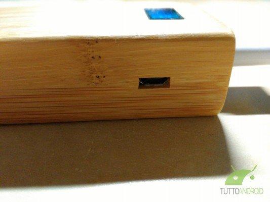 Vinsic-bambù-6