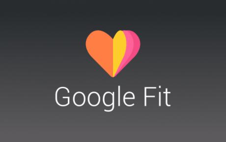 Google Fit logo3 e1406200138318