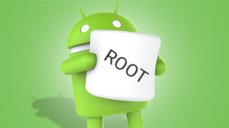 M developer preview root