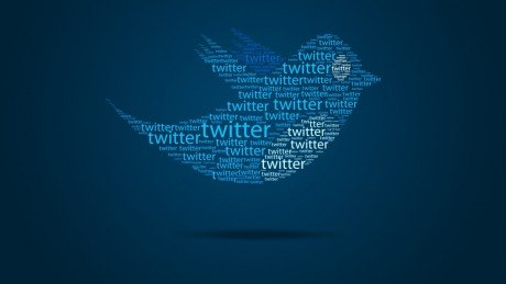 Twitter bird 0