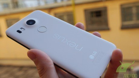 Nexus5XImm3