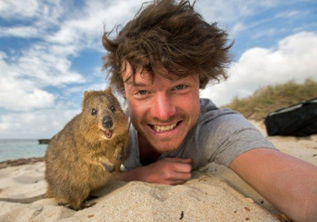 Alan Dixxon animal selfies