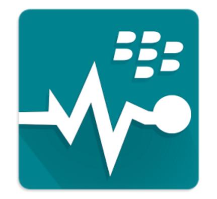 BlackBerry Virtual Expert