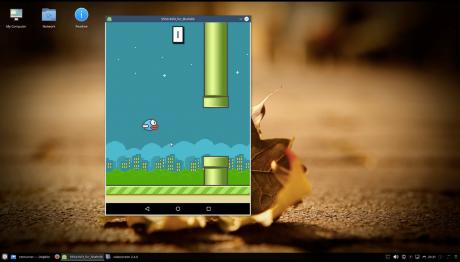 Flappy bird on linux 100648081 orig