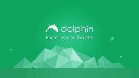 Dolphinbrowser privacy e1461920971311