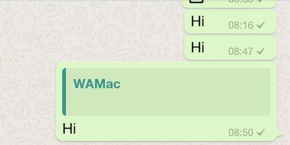 WhatsApp novità messaggi quotati