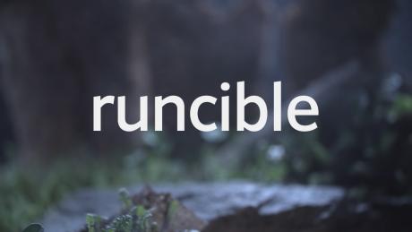Runcible