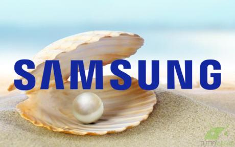 Samsung conchiglia marked