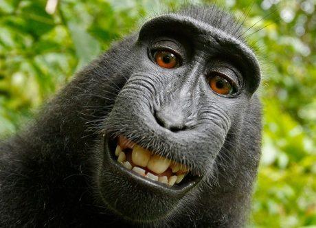 I selfie ci rendono felici