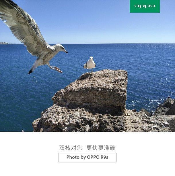 OPPO R9s: spunta in rete il primo sample fotografico