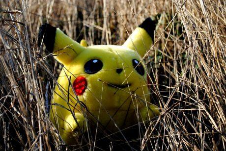 Gameplay of Pokemon Go