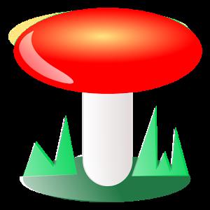 FunghiItaliani
