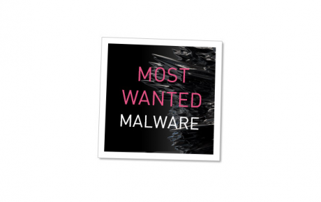 Malware check point 1