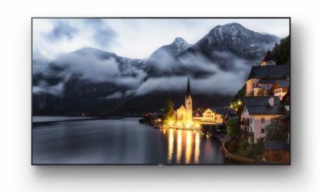 Sony XE9 display professionale 1