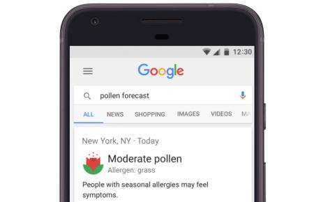 App Google pollini