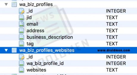 WhatsApp Profili Business