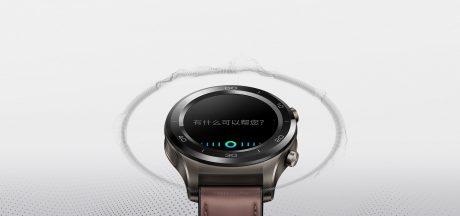 Nexus2cee huawei watch 2 pro 7