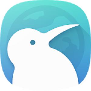 Kiwi Browser permette una navigazione veloce e sicura basata