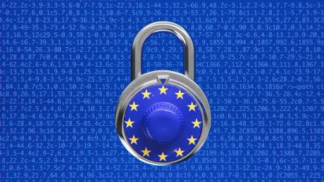 Europa articolo13