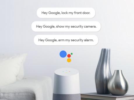 Google home security