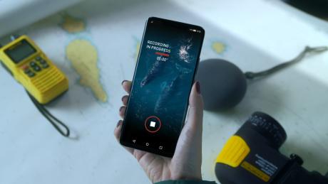 Huawei Mate 20 Pro e l'IA trasformano i canti delle balene i