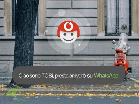 Tobi whatsapp