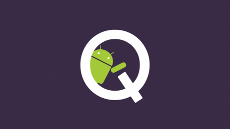 Android Q DM