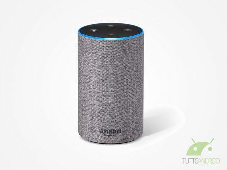 Sapete che con Amazon Alexa potete eseguire l'autolettura de