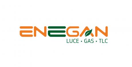 Enegan logo 1