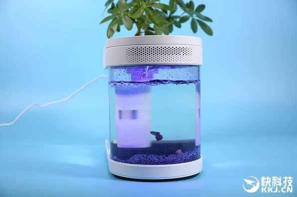 Anche l'acquario può essere smart e dal design accattivante