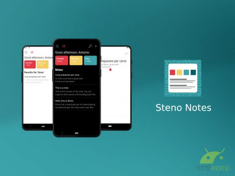 Steno Notes