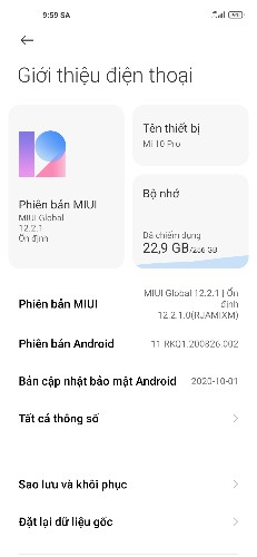 xiaomi mi 10 pro android 11