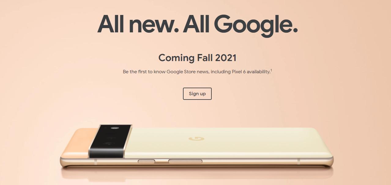 Google esce allo scoperto su Pixel 6 e 6 …