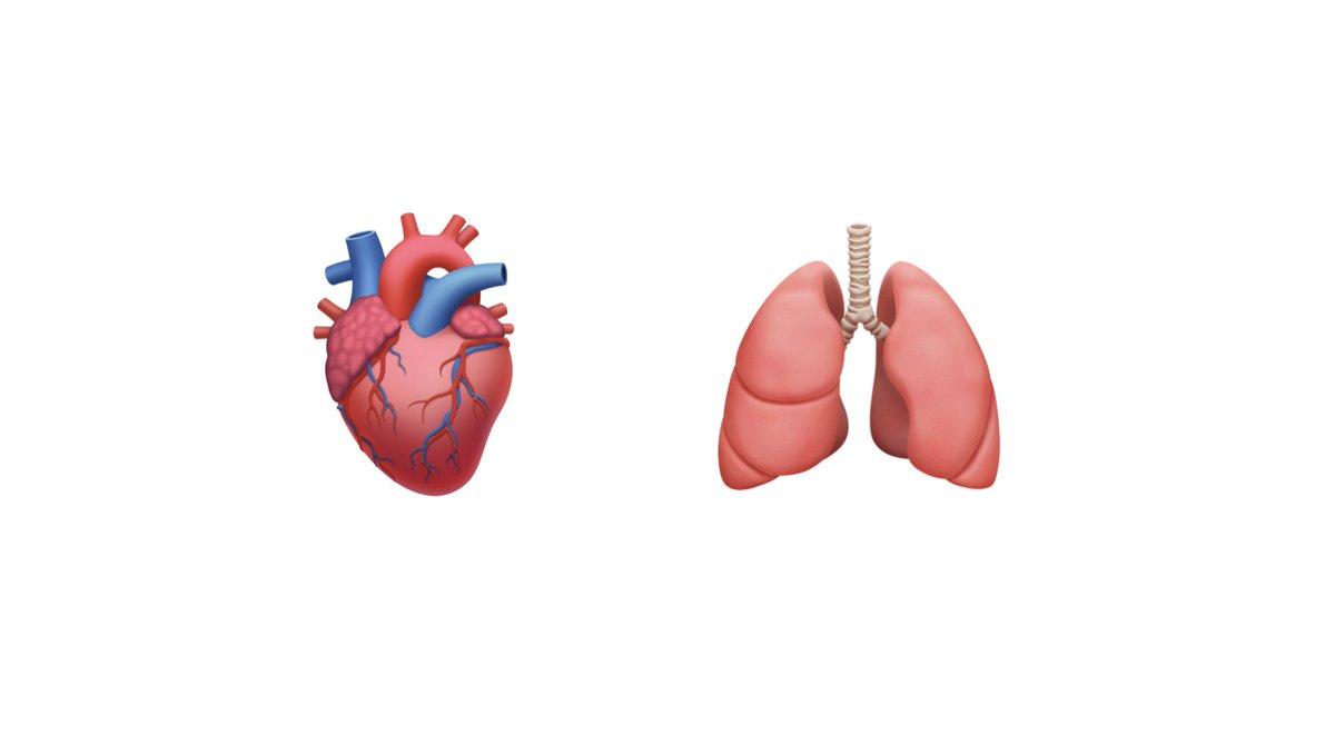 emoji organi corpo umano